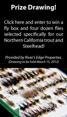 Fly box and four dozen flies for Northern California trout and steelhead.